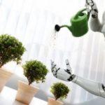 Умный робот-поводырь для растений